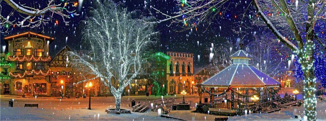 leav_night_snow