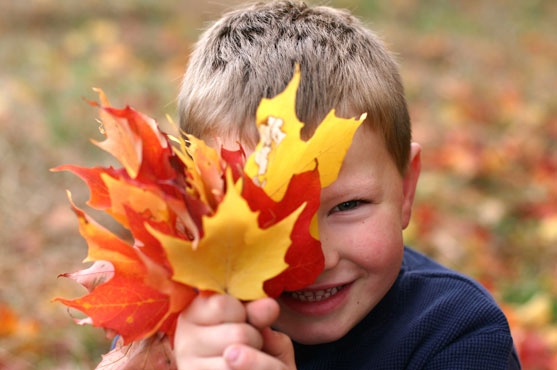 nl_leaves_kids2