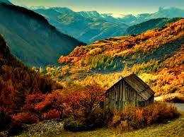 nl_autumn2