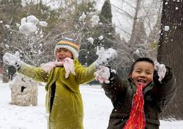 nl_snow