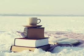 nl_books_snow