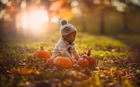 nl_pumpkin